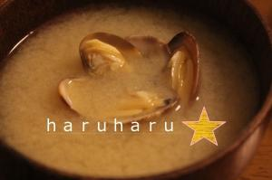おいしいアサリのお味噌汁